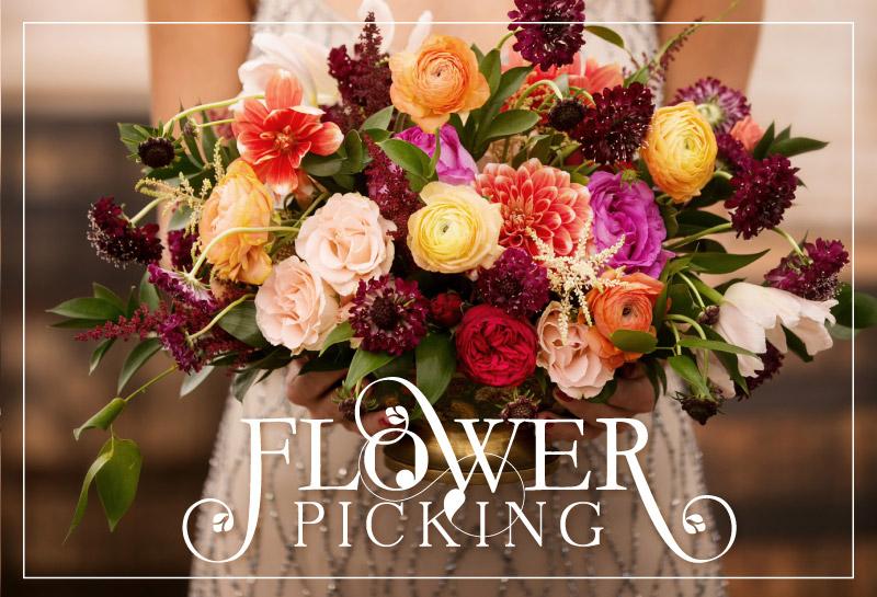 flowerpicking_featuredimage